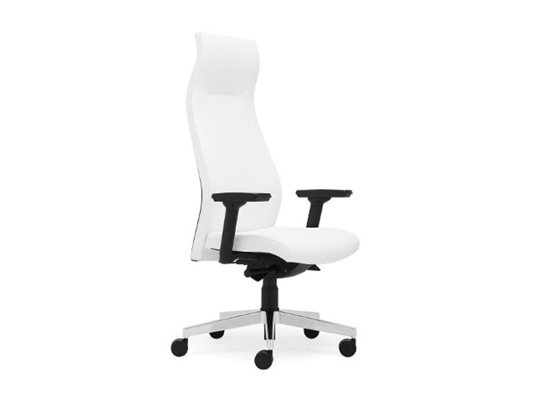 Cadeira Executivo 17